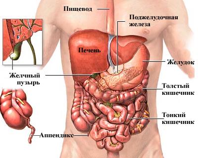 pierdeți abdomenul inferior)